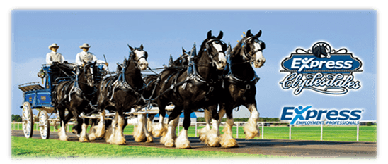 The Express Clydesdales are coming to town!
